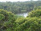 Manaus Suites Hospedagem - Apartamentos - Hostel