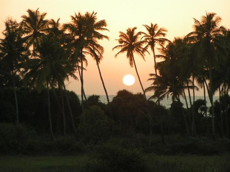 Tarika Gold Coast Villas