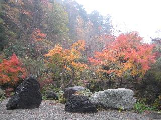 Haze Botanical Garden