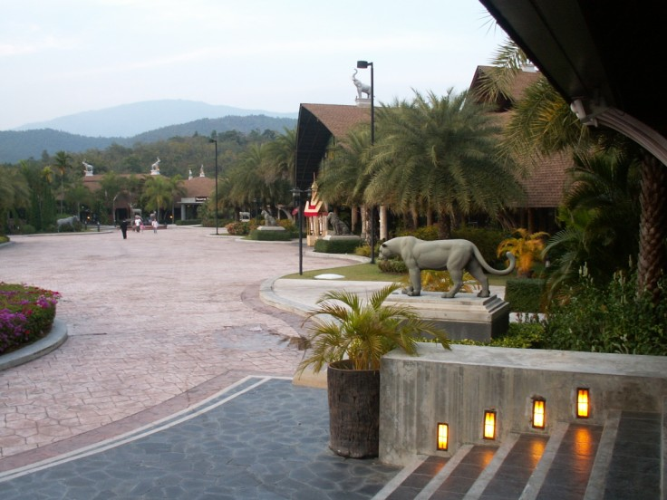 Chiang Mai Night Safari (Thailand): Top Tips Before You Go - TripAdvisor