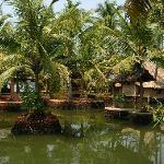 Photo of Cherai Beach Resorts Kochi