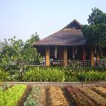 Photo of Rai Saeng Arun Chiang Khong