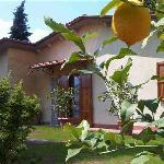 Barga Holiday Home Rustico