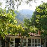 Photo of Olympos Lodge Hotel Cirali