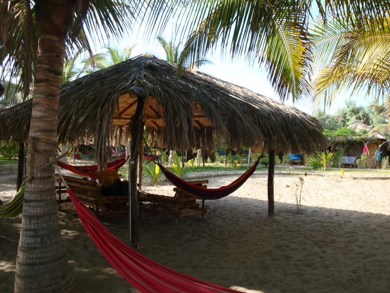 Laguna Surf Camp