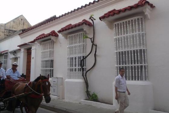 La Casa del Santisimo Mango