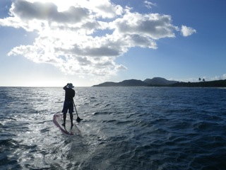 Vieques Paddleboarding
