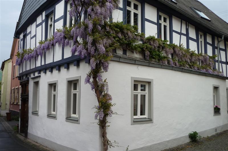 Arnsteiner Hof