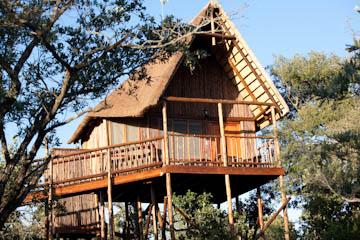 Bona Ntaba Self Catering Tree House Lodge