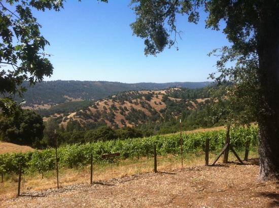 Story Winery