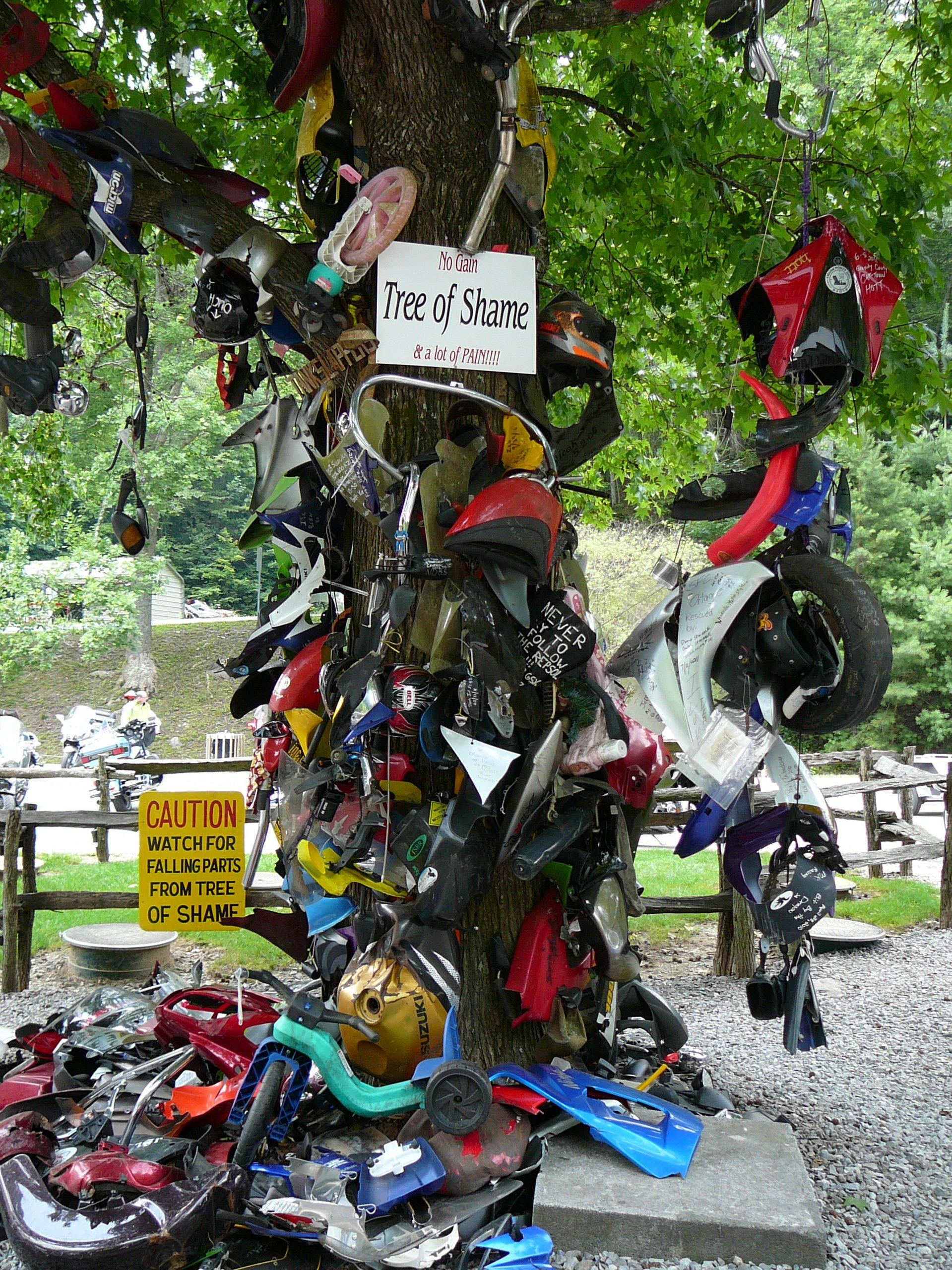 Tree of Shame at Deals Gap Motorcyle Resort
