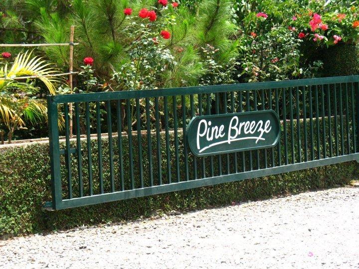 Pine Breeze Cottages