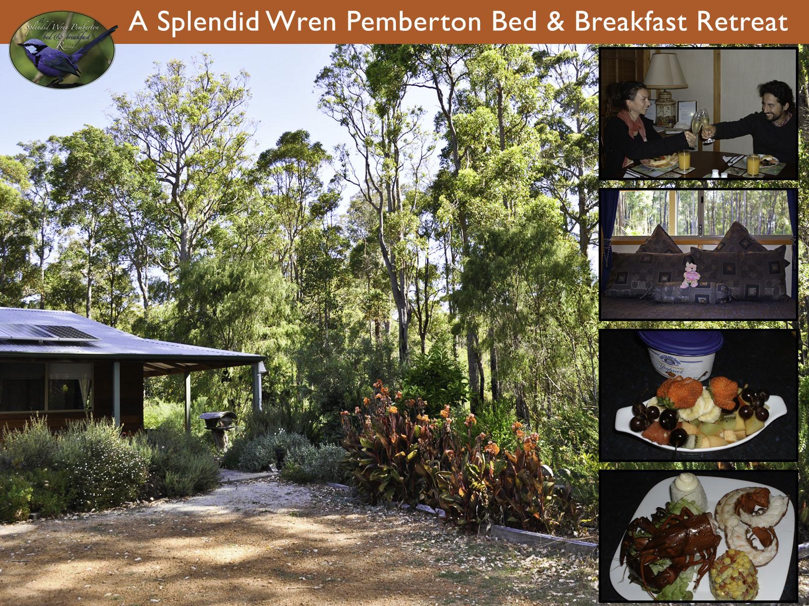 A Splendid Wren Pemberton Bed & Breakfast Retreat