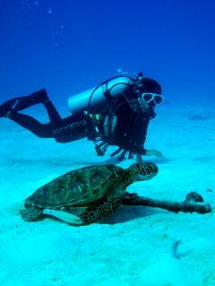 Mermaid Saipan