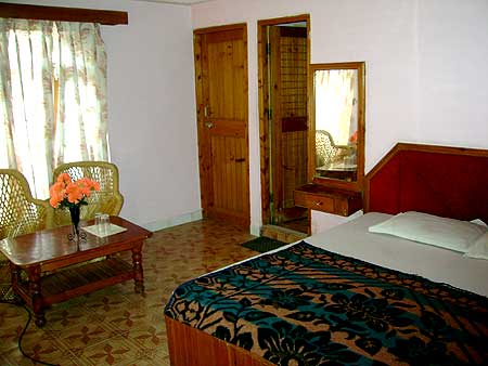 Hotel New River West Manali