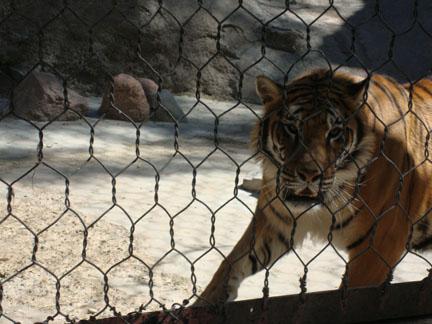 Jardin Zoologico