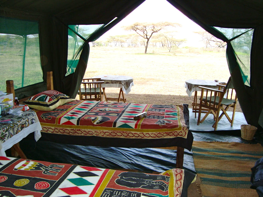 ‪Ndutu Wildlands Camp‬