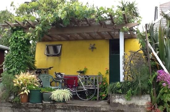 Pukeko Cottage Backpackers