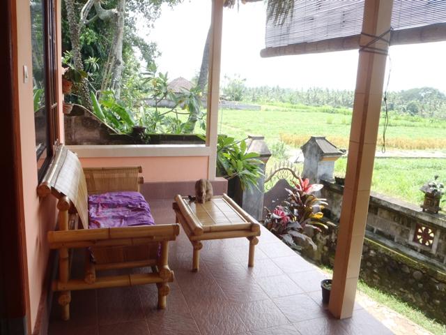 Bali Traditional Homestay