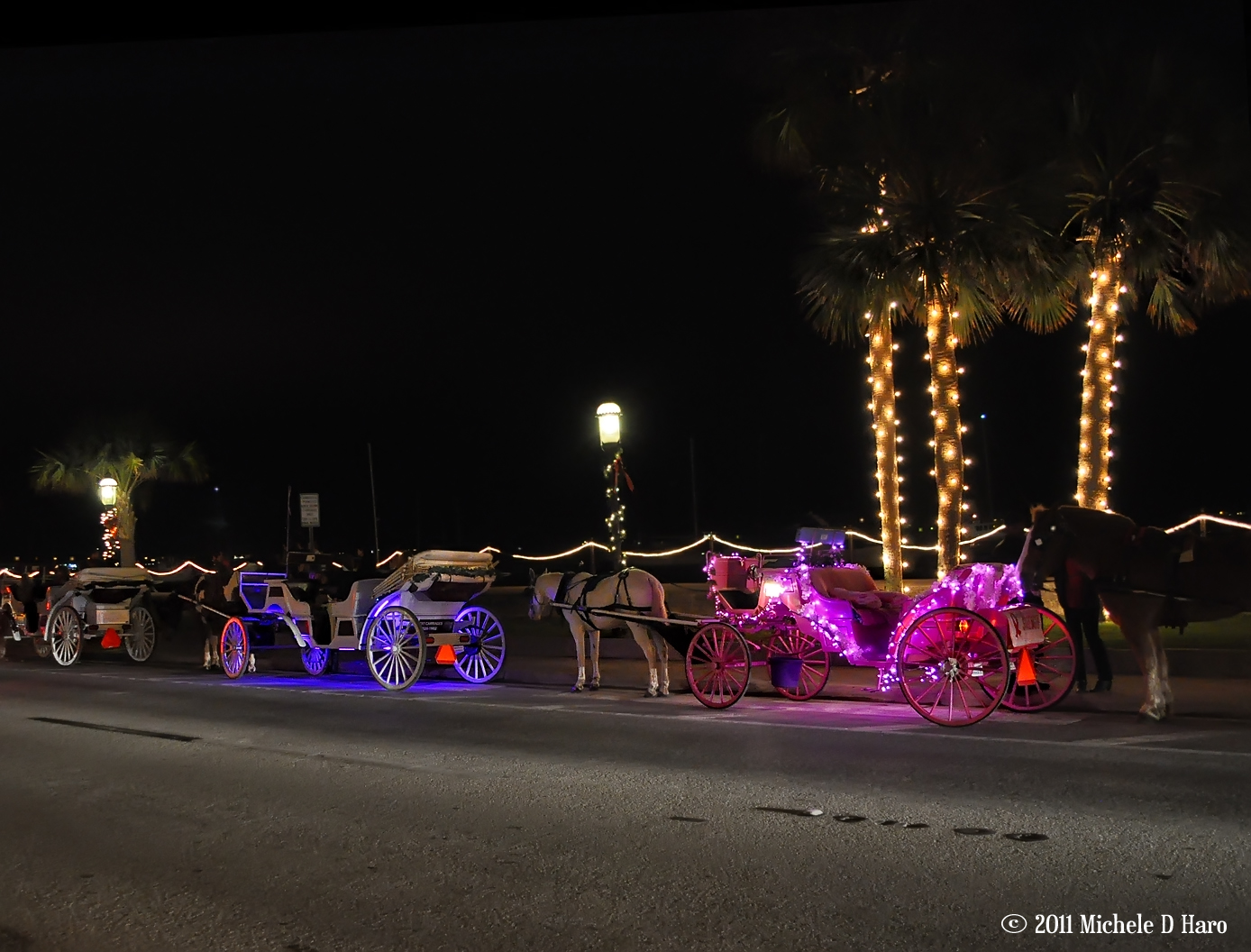 Even the horse & buggies were lit up.