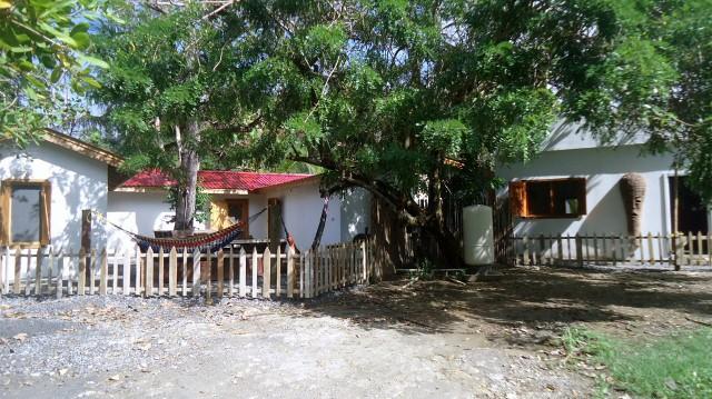 Hostel La Buena Onda