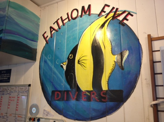 ‪Fathom Five Divers‬