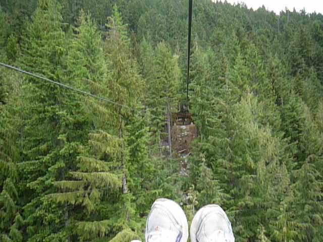 Zip lining on Cougar Mountain