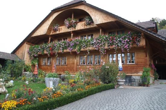 Ferienhof Krindenhof