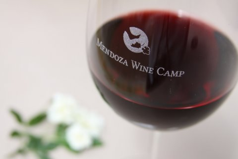 Mendoza Wine Camp - Day Tours