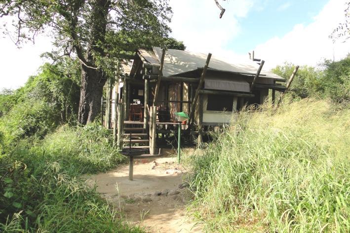 Tamboti Camp