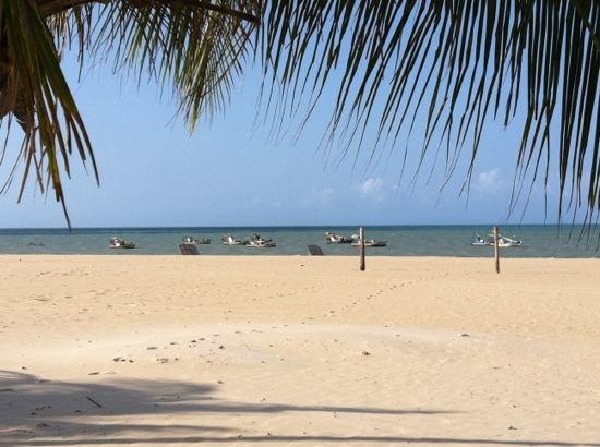 Things To Do in Maceio Beach, Restaurants in Maceio Beach