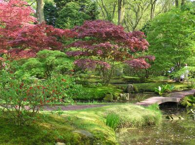 海牙日式花园