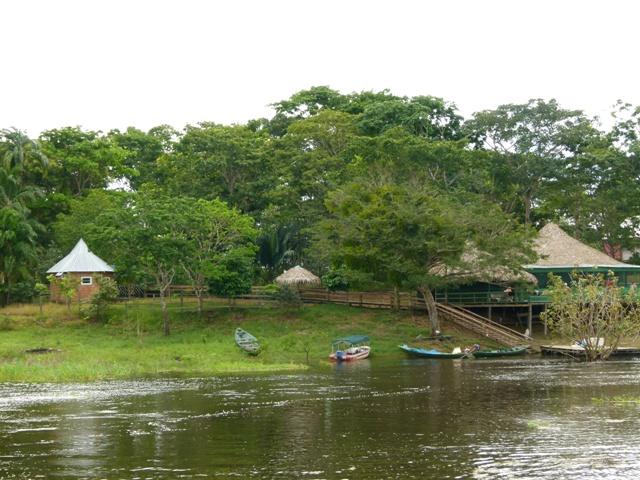Mamori Jungle Hotel