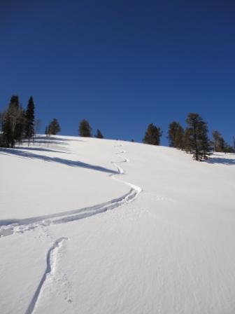 Diamond Peaks 6 Run Heli-Ski Tour