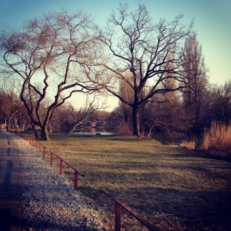 The Solnechny Ostrov (Sunny Island) Park