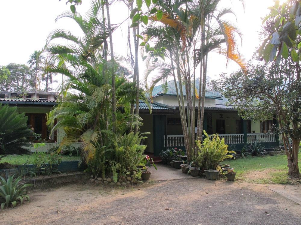 Lizzie Villa Guesthouse
