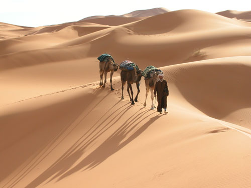 Moroccan Trails