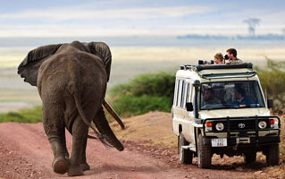 HM Safaris Day Tours