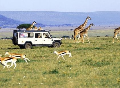 Sunrise Day Tour Safaris Kenya
