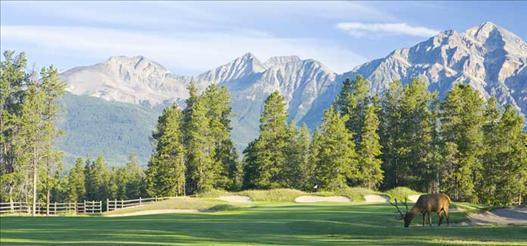 Jasper Park Golf Course