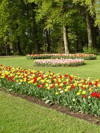 Floralia - Spring Flower Show