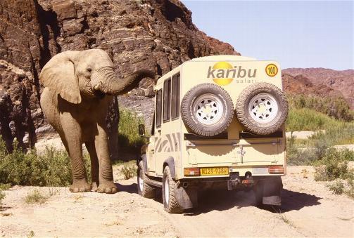 Karibu Safari