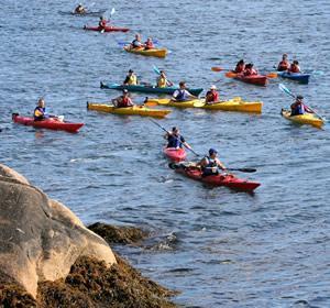Sea Sun Kayak - Day Tours