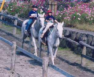 Pegasus Riding Park