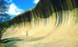 1 Day Wave Rock tour - Pinnacle Tours