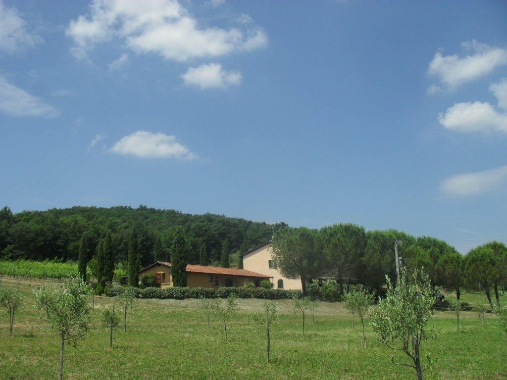 Gavorrano Italy  City pictures : ... Podere Mulinaccio Gavorrano, Italy Farmhouse Reviews TripAdvisor