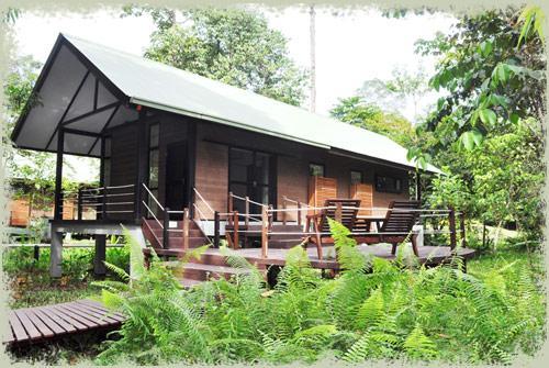 Mulu World Heritage Area Accommodation