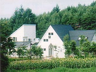 St. Village