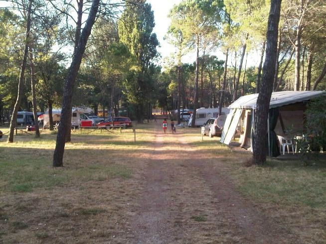 Belvedere Pineta Camping Village