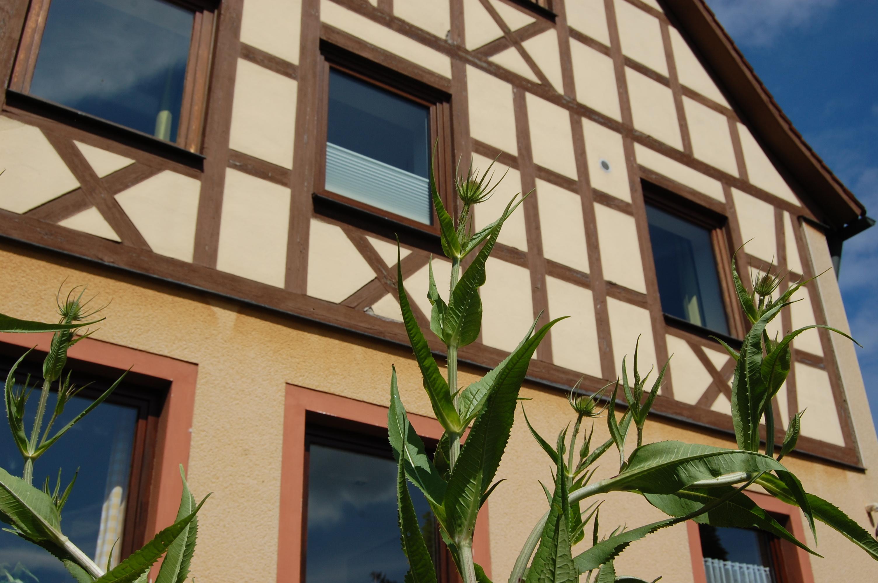 Gasthof Linden & Wildkraeuterhotel